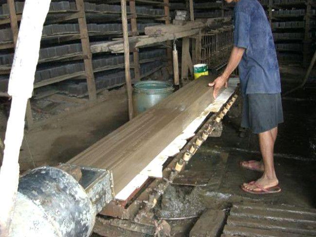 bambusz4
