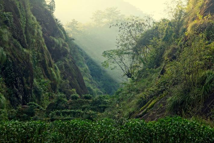 A Wuyi hegyi sziklaszoros