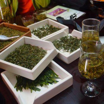 Huangshan zöld teái