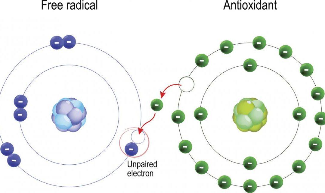 Tömény teakémia – Azok a híres antioxidánsok
