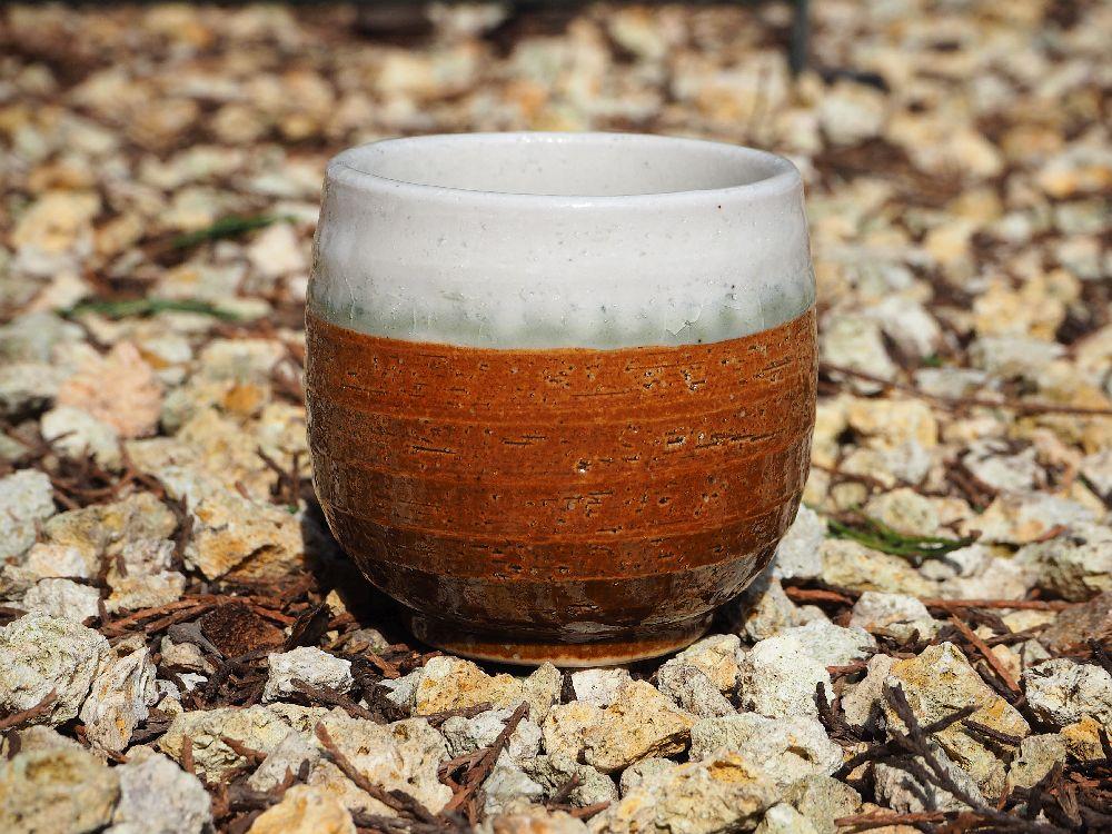 sencha csésze 12